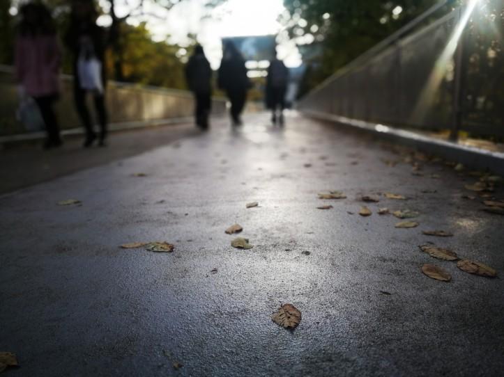 the pedestrian essay